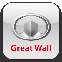 Скрутить пробег GREAT WALL